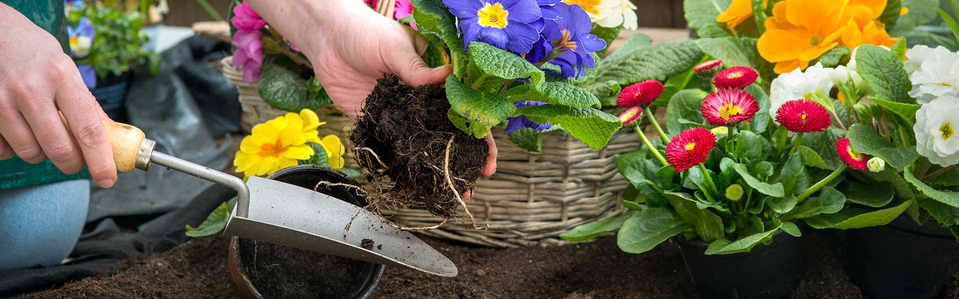 Save yourself time and let us do the gardening for you!